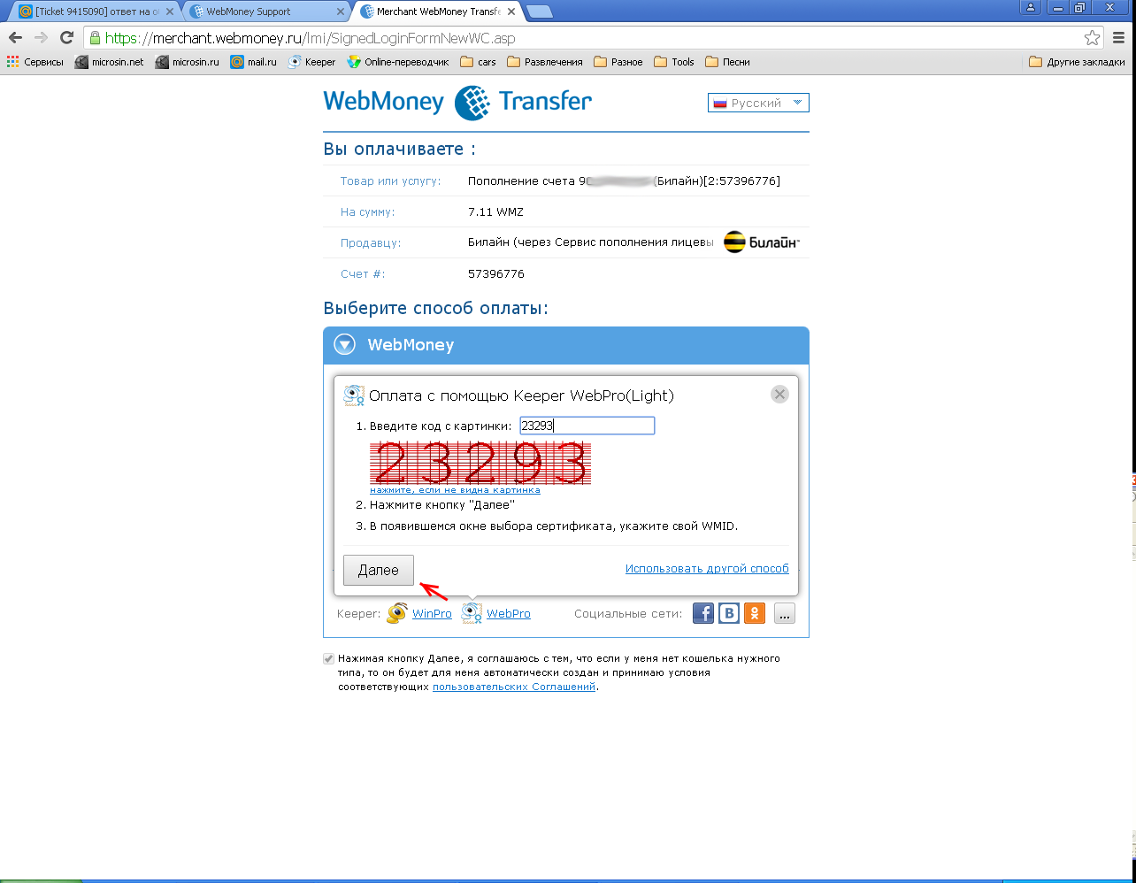 WebMoney Chrome step05